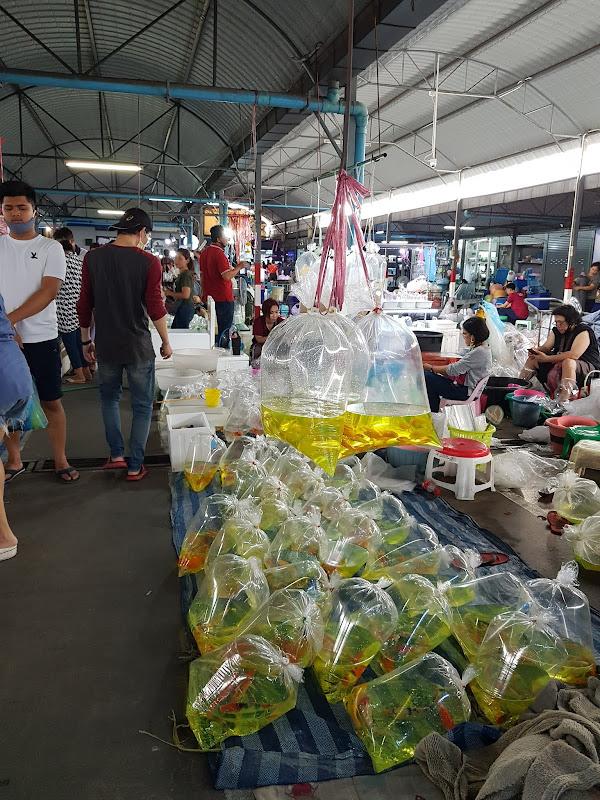 OBJEK WISATA BANGKOK, Chatuchak Fish Market
