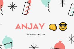Arti Anjay dalam Bahasa Gaul, Ternyata ini Arti Anjay Sebenarnya
