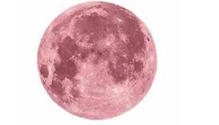 super moon  2020,pink moon