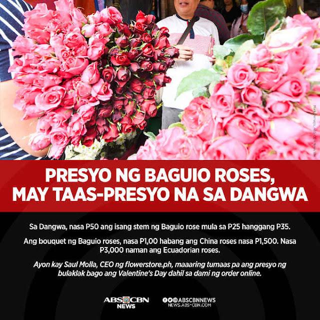 presyo ng baguio roses