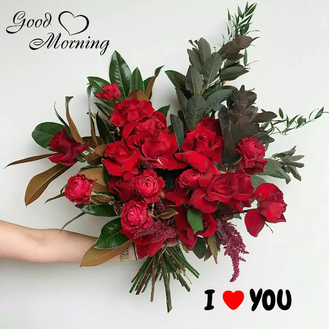 good morning flowers love