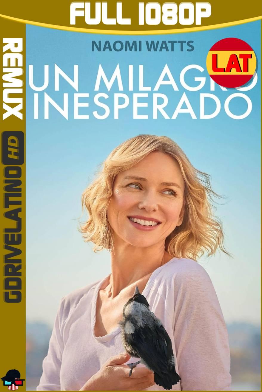 Un Milagro Inesperado (2020) BDRemux 1080p Latino-Ingles MKV