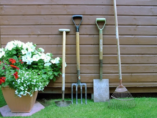 Basic Gardening Tools You Will Need for Easy Gardening