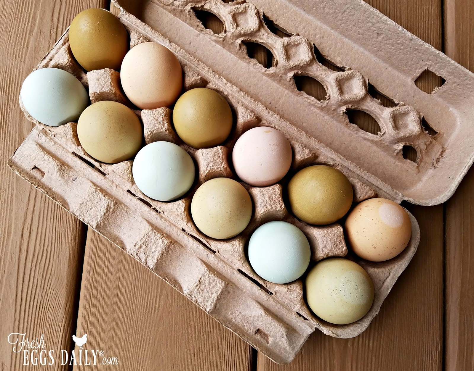 7 Tips to Help You Sell Your Farm Fresh Eggs For More Money