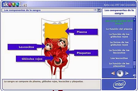 http://skoool.es/content/ks4/biology/blood_circulation/blood_components/launch.html