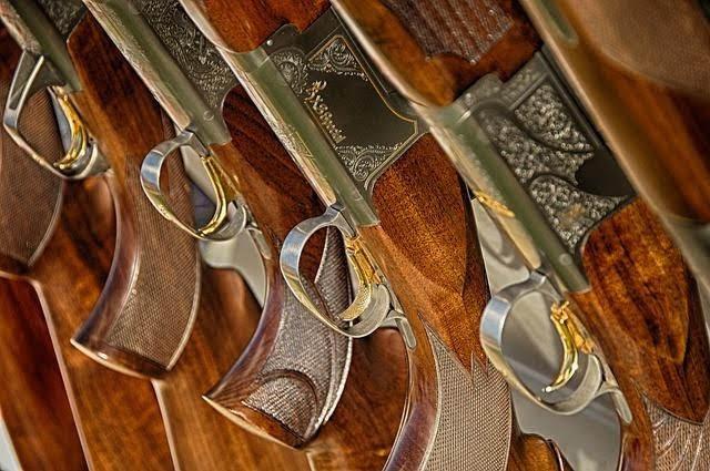 Os principais argumentos contra a lei do desarmamento, mostrando as vantagens da legalização do porte de armas no combate aos crimes e assassinatos.