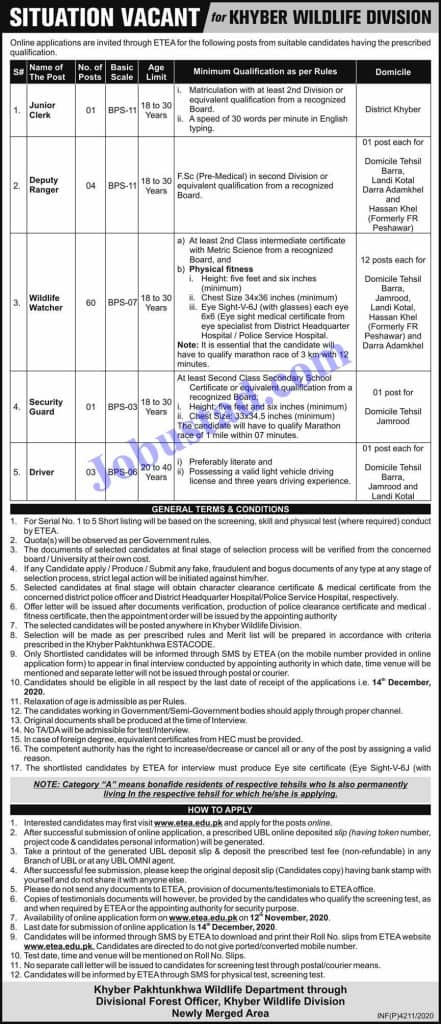 Etea jobs in Wildlife Department KPK Nov 2020