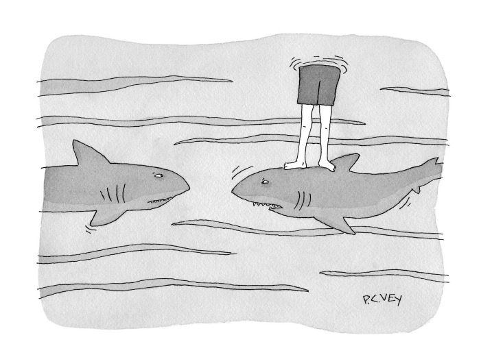 Attempted Bloggery: My Entry in The New Yorker Cartoon