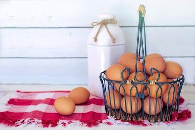 Gambar telur ayam