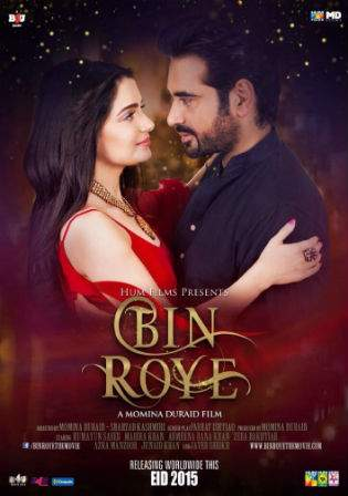 Bin Roye 2015 DVDRip 950MB Pakistani Urdu Movie x264 Watch Online Full Movie Download bolly4u