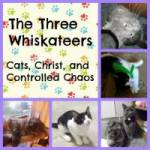 Grab button for The Three Whiskateers