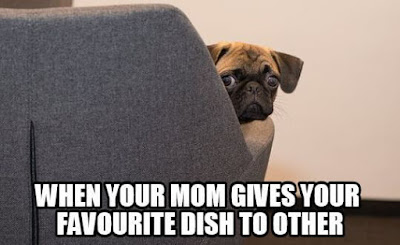 Popular memes right now