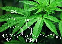 CBD Marijuana Chemical