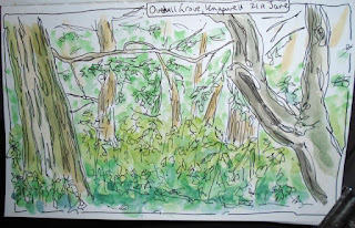 Nature journal Overhall Grove NR