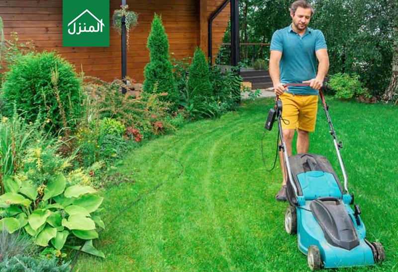 العناية بالعشب الطبيعي في حديقة البيت