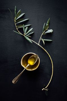 Olive oil Photo Aiala Hernando