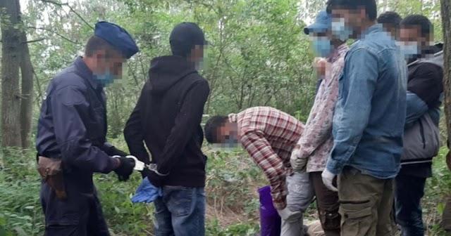 Tizenegy határsértőt fogtak el Gyula külterületén