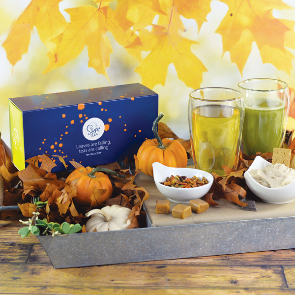 Steeped Tea collection for fall