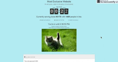 Most Exclusive Website gatos