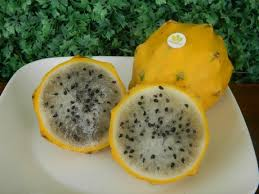 Benefits And Efficacy Of Yellow Dragon Fruit For Health - Healthy t1ps
