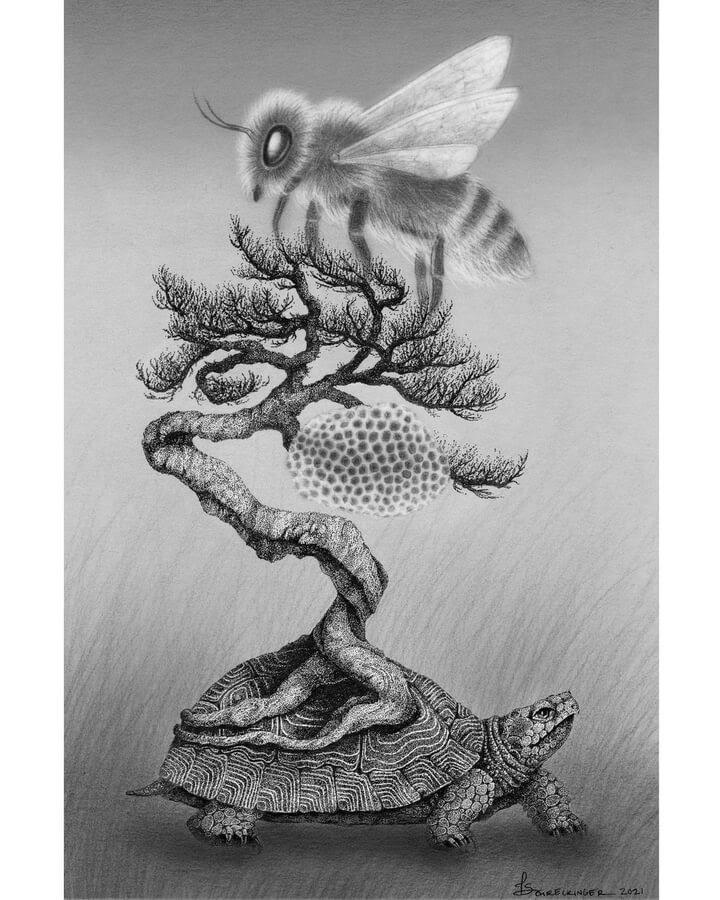 05-The-tortoise-and-the-queen-honey-bee-Juliet-Schreckinger-www-designstack-co
