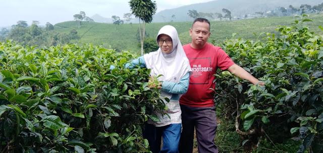 Indahnya Pemandangan Wisata Karanganyar di Desa Wisata Gumeng Karanganyar Jawa Tengah