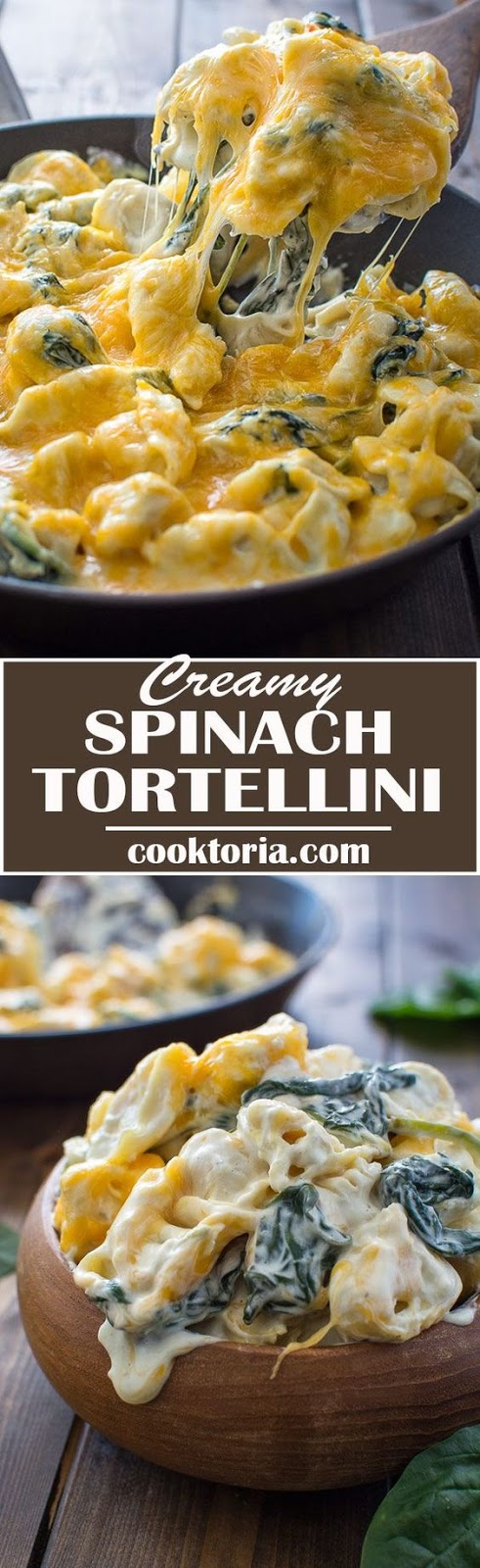 ★★★★☆ 2671 ratings    | CREAMY SPINACH TORTELLINI #CREAMY #SPINACH #TORTELLINI #VEGETABLE #DELICIOUS