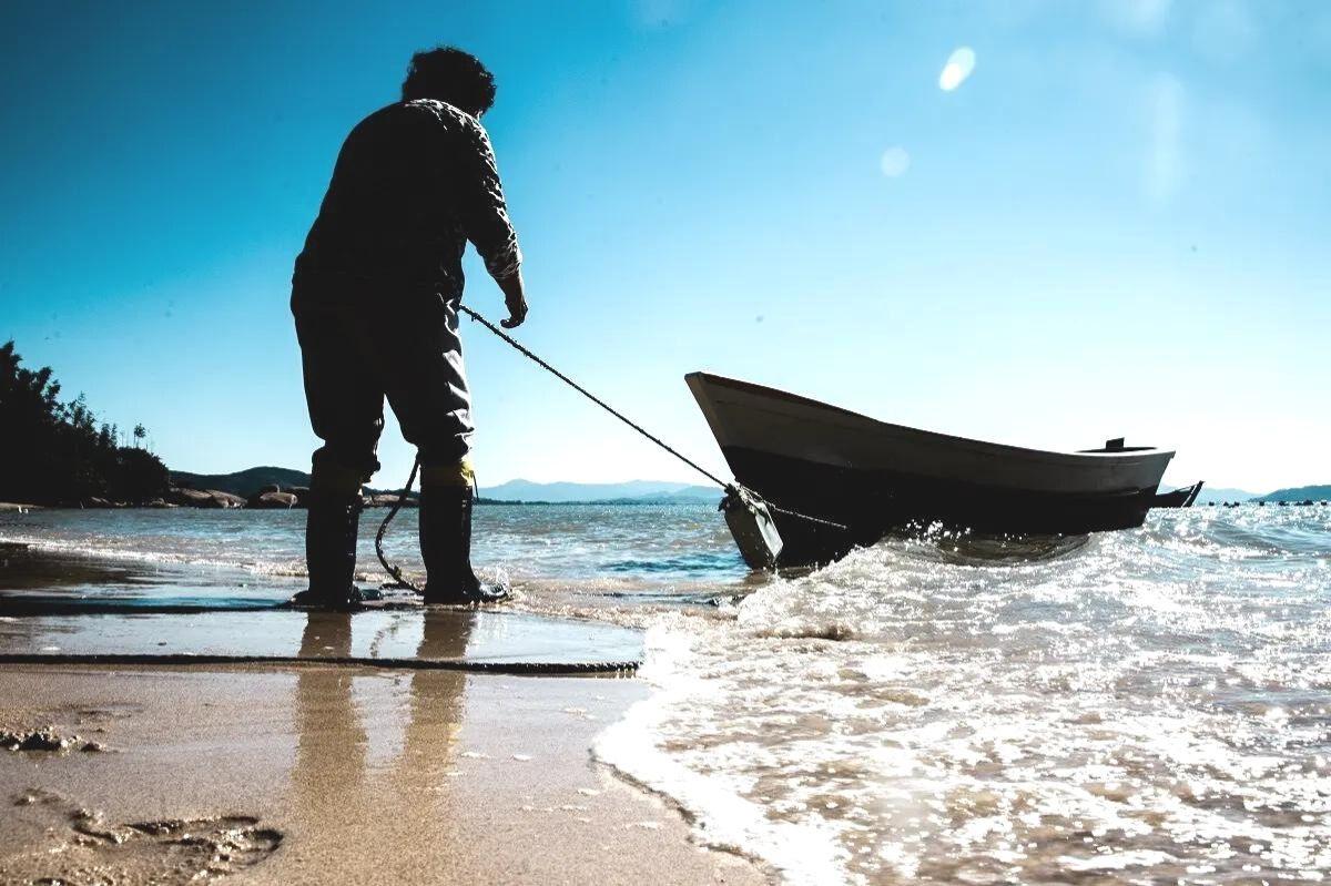 Portos do Paraná incentiva consumo de peixes da pesca artesanal