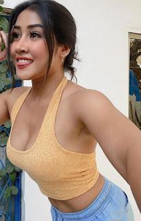 sofia-ansari-beautiful-photos-and-biography-in-hindi