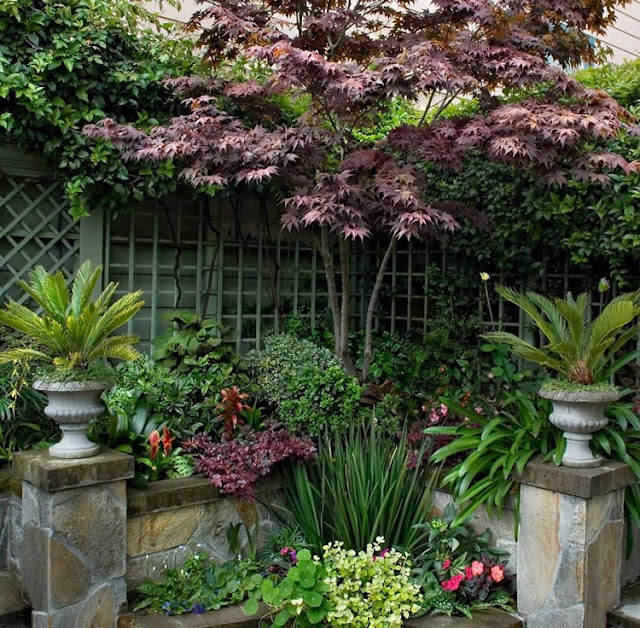Surround and surround your villa courtyard with plants and turn your villa courtyard into an oasis