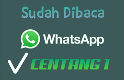 Begini Cara Buat Chat Whatsapp Centang Satu Walau Sudah Terbaca