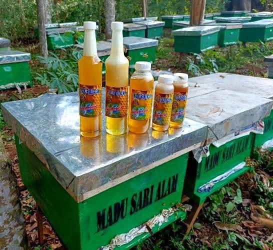 manfaat madu alam