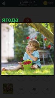 ребенок из корзины ест ягоды сидя на траве