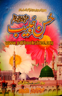 Husn e Habib S.A.W by Syed Nasir Hussain Chishti Sialvi