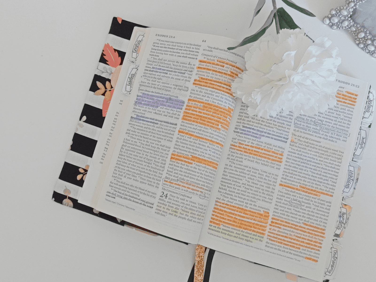 ible study plans | bible study printables | bible study reading plans | bible journaling tips | soap notebook | Soap bible study method | Bible study beginners | #biblestudy | #biblejournaling