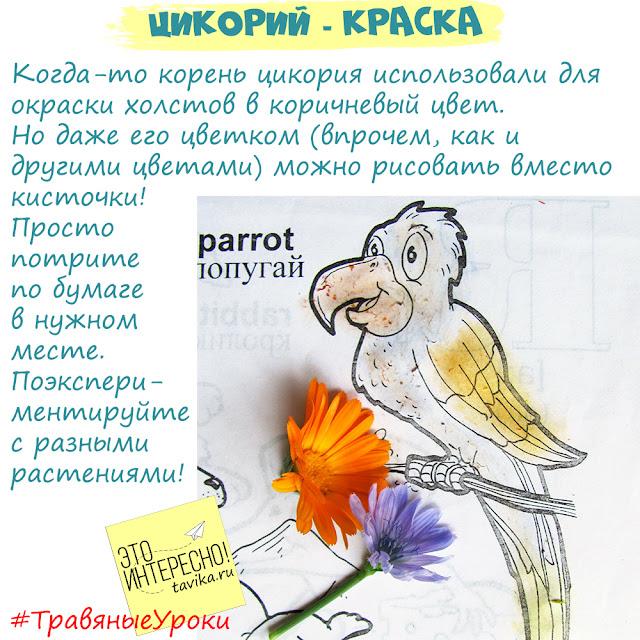 рисуем цветами