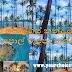 සුන්දර පොල්ගස් කන්ද හෙවත් පොල් රුප්පා කන්ද 🌴🌴🌊 (Coconut Tree Hill)