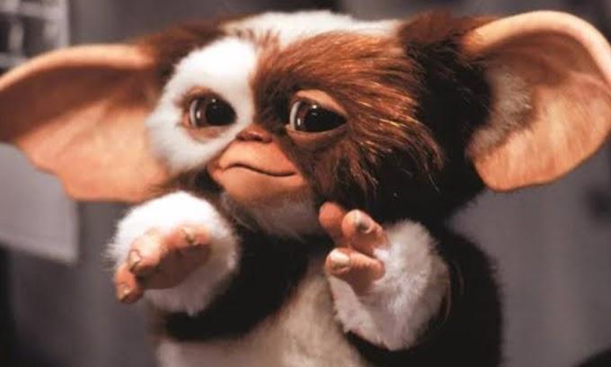 El creador de criaturas en la película Gremlins ha desvelado los primeros bocetos para los Mogwai y para los gremlins.