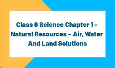 Class 6 chapter 1 textbook solutions