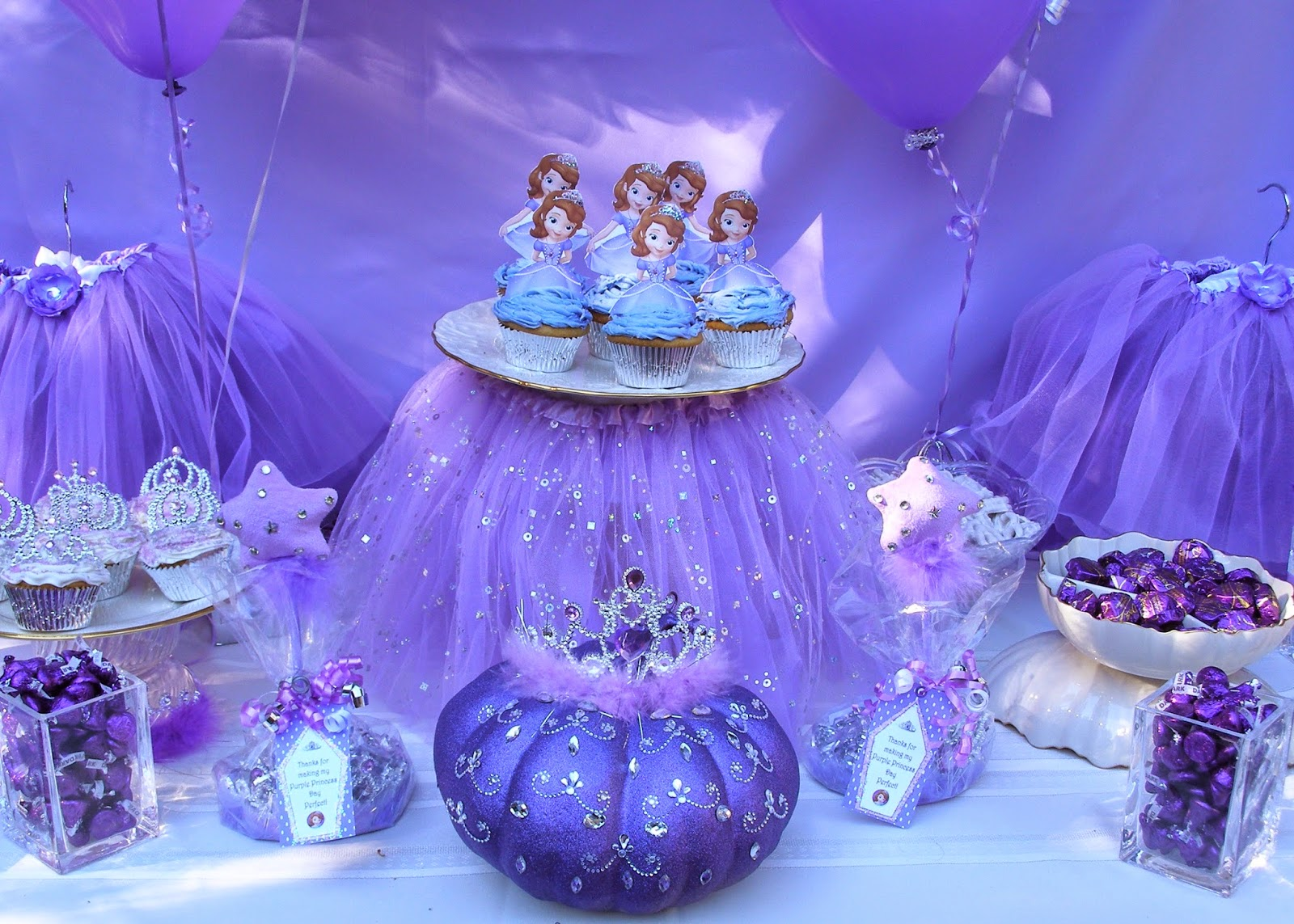 The Princess Birthday Blog Introducing Our New Little
