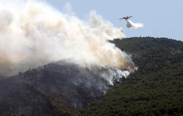 Σε Ύφεση Η Φωτιά Στη Σιθωνία - Έφτασαν Στην Περιοχή Τα Εναέρια Μέσα Πυρόσβεσης