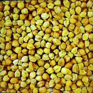 Mustard and chana buying centres in Rajasthan.