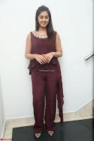 Nikki Galrani in a Brown Shining Sleeveless Gown at Nakshatram music launch ~  Exclusive 074.JPG