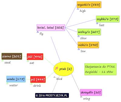 Skojarzenia do słowa PTAK z tłumaczeniem na język angielski