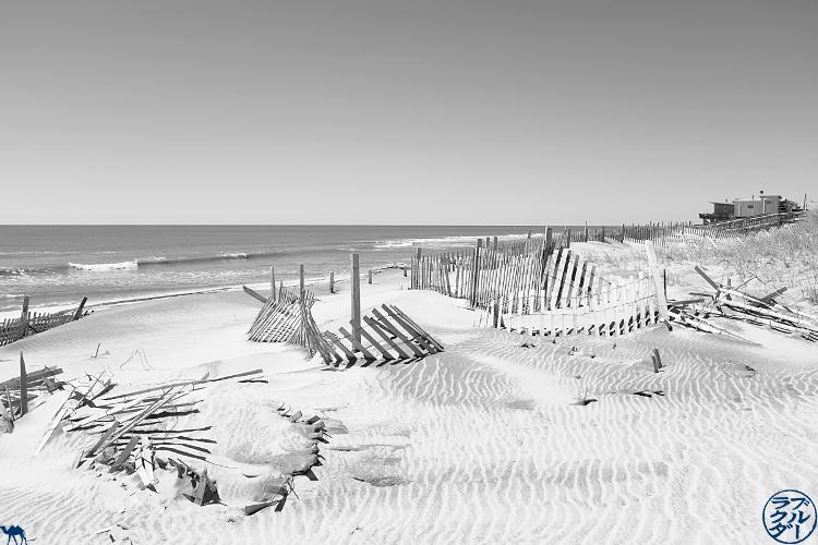 Le Chameau Bleu -  Dune  de Davis Park  - Vacances à Long Island New York