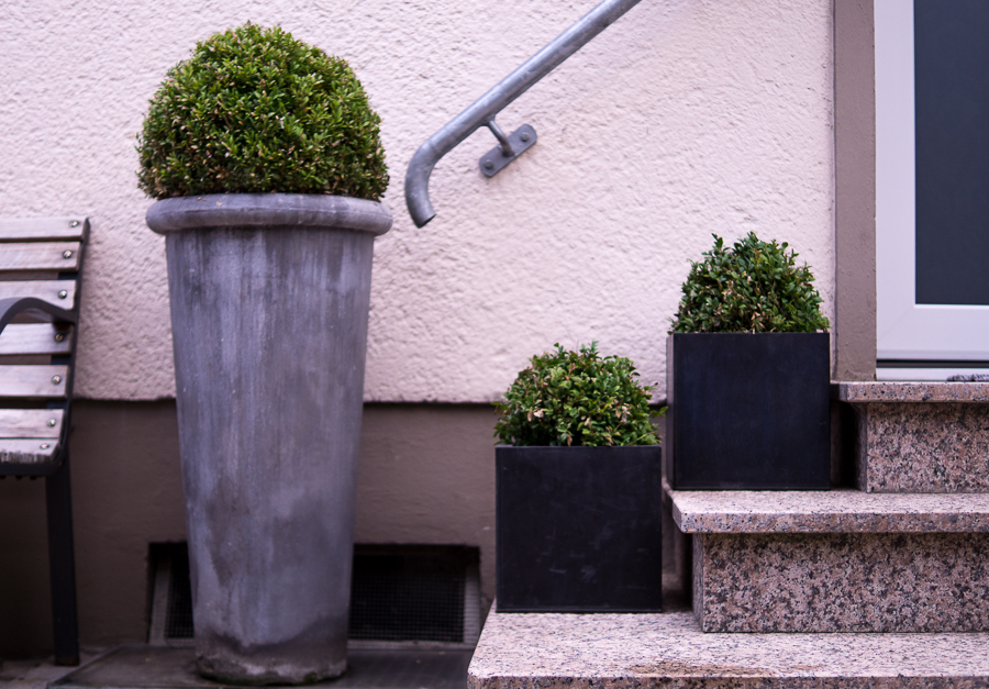 Blog + Fotografie by it's me! | fim.works | Bunt ist die Welt | Garten im Juni 2016 | Buchsbaumkugeln im Eingangsbereich