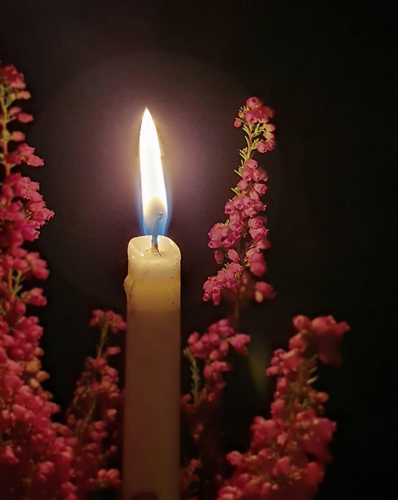 pyhäinpäivän kynttilä lepattaa kanervikossa