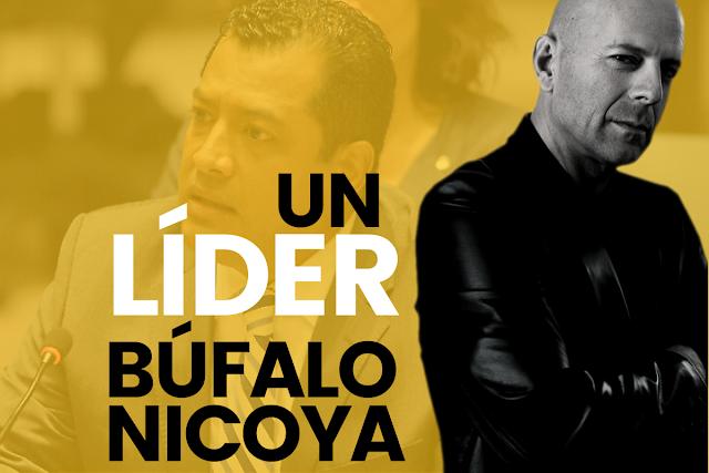 como ser un buen lider bufalo nicoya