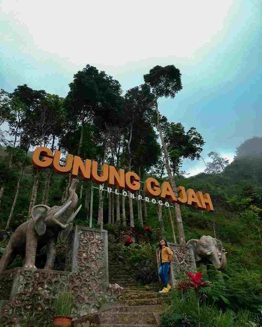 Tebing Gunung Gajah Kulon Progo, Wisata di Perbukitan Menoreh
