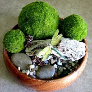 Living Moss Ball Tutorial